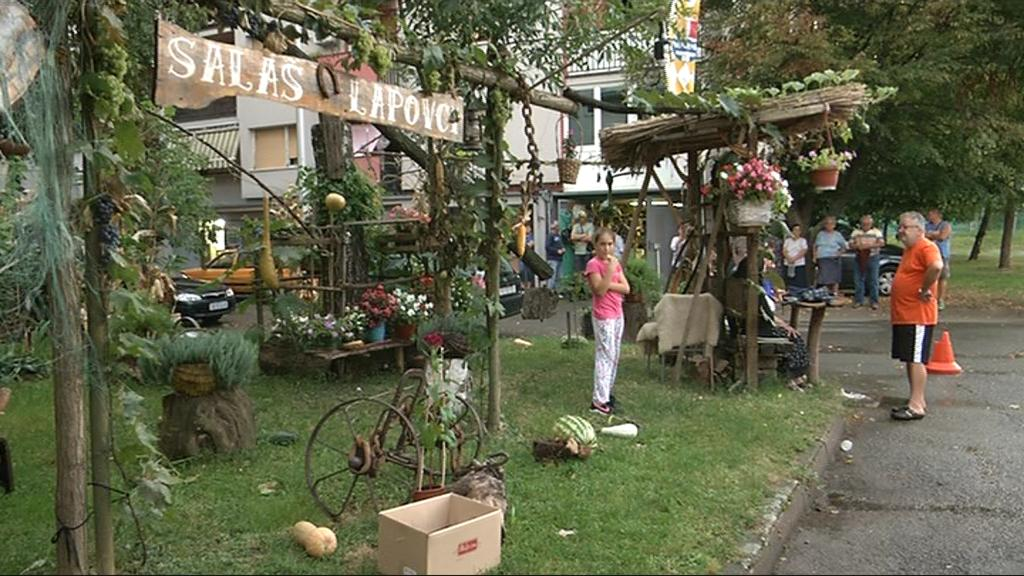 Salaš Lapovci-Vinkovčani sami uradili mali etno park ispred stambenih zgrada